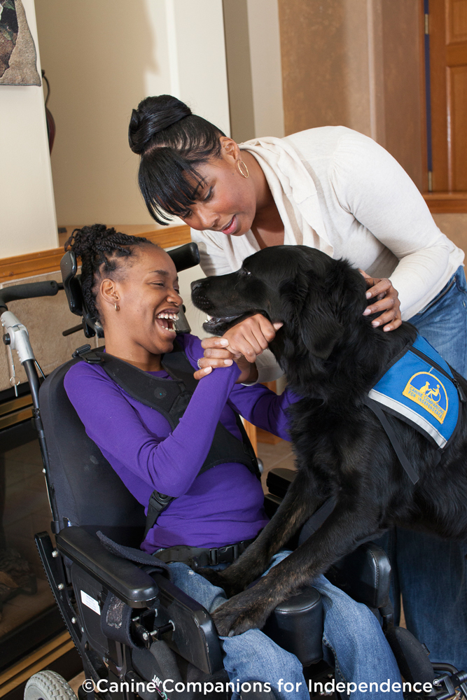 Child in wheelchair with adult and service dog
